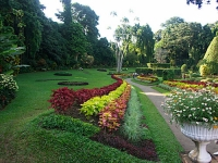 Peradeniya Garden